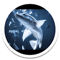 Shark Tank Live Wallpaper icon