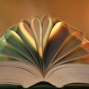 Knowledge is glowing by Nizam Akanjee - Artistic Objects Other Objects ( akanjee, abhisaek, book, glowing pages )