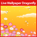 Dragonfly Live Wallpaper icon