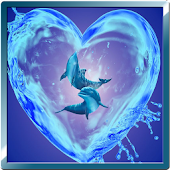 Lovely Dolphins Live Wallpaper