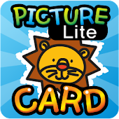 PictureCard_Lite