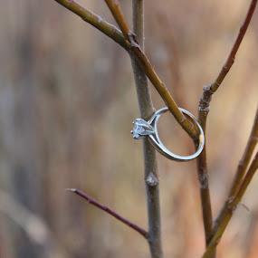 Say yes by Jennifer Watkins Odom - Artistic Objects Jewelry ( object, artistic, jewelry )