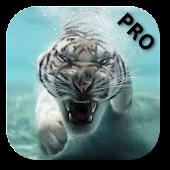 Tiger Pro
