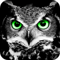 Night Helper(Night vision) icon