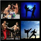 Mixed Martial Arts Wallpaper