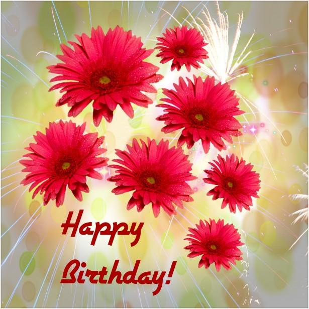 Happy Birthday Greetings Android Apps on Google Play – Happy Birthday Greeting Photo