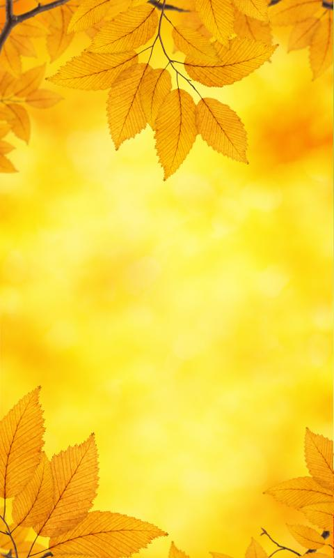 Autumn Live Wallpaper 1 - screenshot