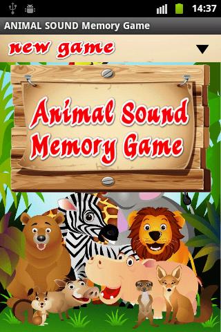 Animal Sound Memory Game