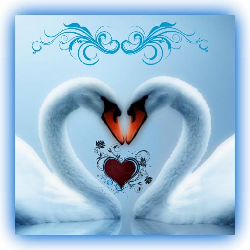 Love Bird Live Wallpaper 娛樂 App LOGO-APP試玩