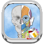Anatomy Coloring Book APK icon