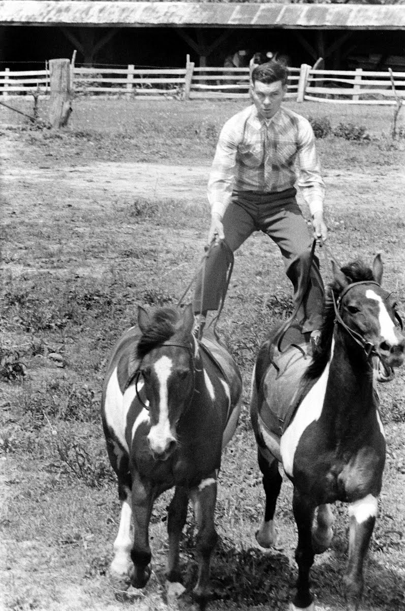 Bud Jones, Blind Horse Trainer