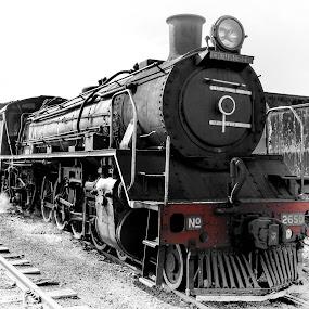 by Richard Ryan - Transportation Trains ( train, steam,  )