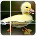 Birds Puzzle icon