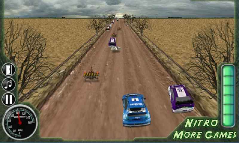 3D Rally Fever - screenshot