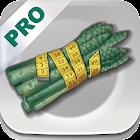 Dash Diet Pro icon