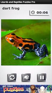 Lizards & Reptiles Free Puzzle - screenshot thumbnail