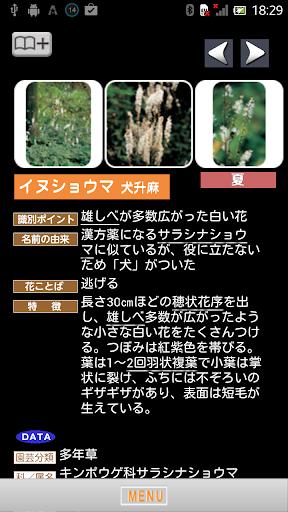【免費書籍App】季節の野草・山草図鑑-APP點子