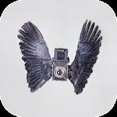 Birds Camera