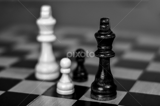 Chess | Objects & Still Life | Black & White | Pixoto