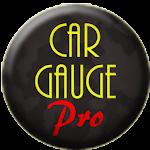 Car Gauge Pro (OBD2 + Enhance) v3.66.25
