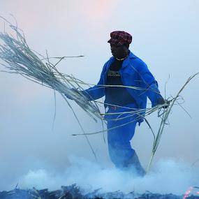 Sweet sugar by Vanessa Meyer - People Street & Candids ( farm, flames, african, blue, africa, sugarcane, zulu, farming, smoke, sugar )