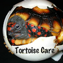 TORTOISE CARE logo