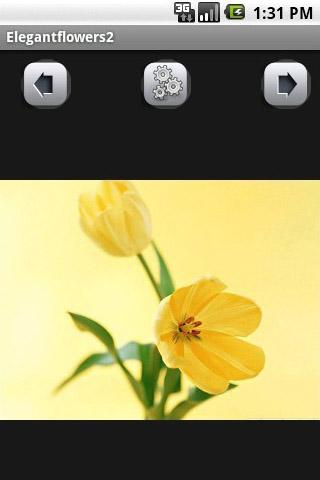 Elegant flowers  Wallpaper - screenshot