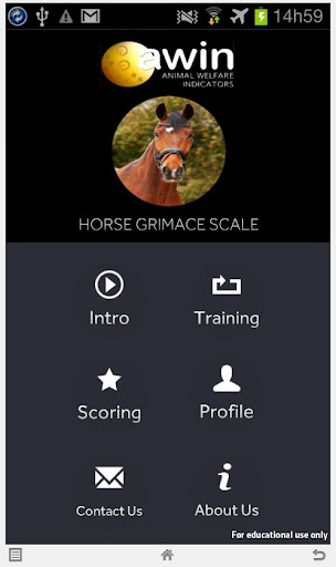 Horse Grimace Scale