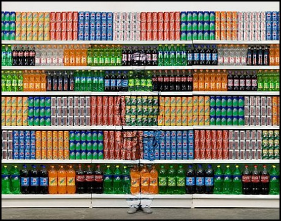 L'art de Liu Bolin sur 1tourdhorizon.com-3