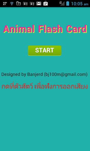 bjFlash Card VOL. 1
