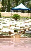 HERZL.CEMETERY.PIC.