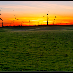Wind Turbines - Rio Vista, California by Dirk Dreyer - Landscapes Sunsets & Sunrises ( m43, lumix, california, m43ftw, outdoor, gx7, micro four thirds, mirrorless, panasonic )