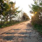 Iść w stronę słońca. Do czasu jak nie zajdzie. A potem będziesz wracał po ciemku.
