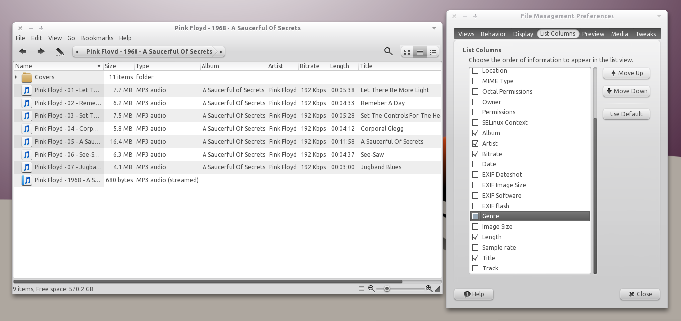 Music And EXIF Metadata Information In Nautilus List View