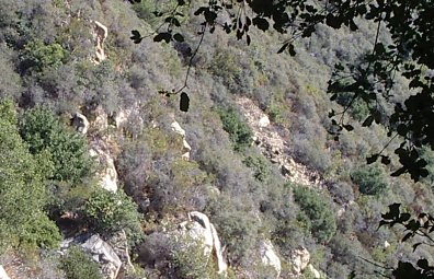bit of cascade of the falls?