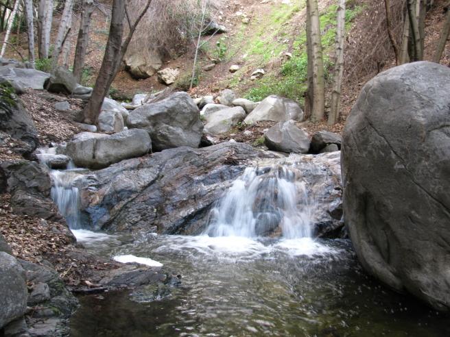 Cute little cascades along the trail.