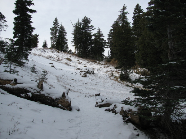 Snowy trail just before the crest and the lake.