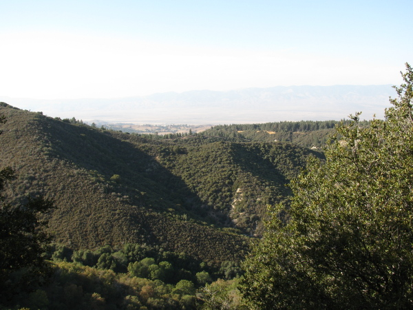 Desert and mountians and trees along the ridges.