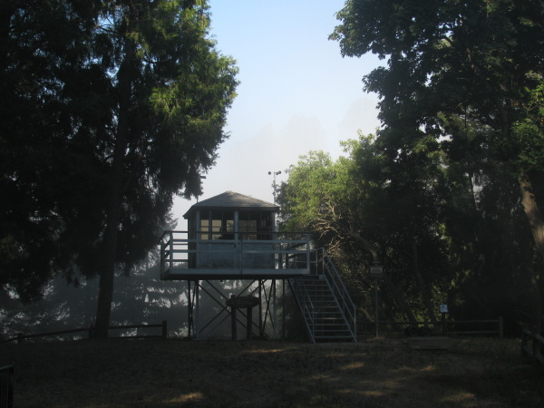the fire lookout