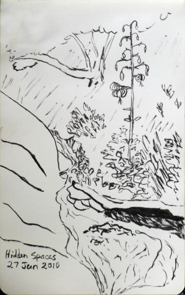 sketch of the stream similar to the first photo of it