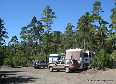 Site 10 at the Florence Elks RV Park, a nice back-in.