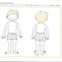Laminas Del Cuerpo Humano Para Niños De Preescolar