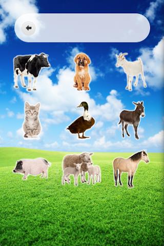 KidEdu Farm Animals
