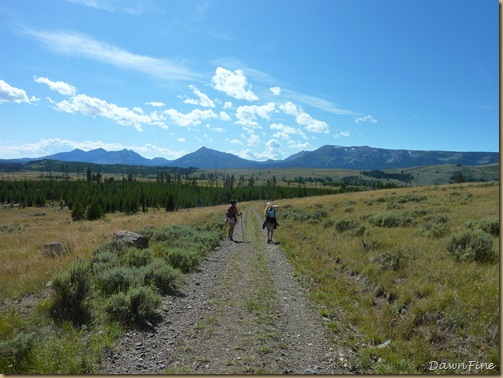 Yellowstone Avalanche Peak Trail Will Surely Kick Your ... |Peak Hike Yellowstone