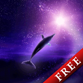 Dolphin Galaxy Trial