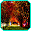 Autumn Wallpaper icon