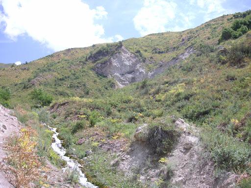 23 juillet. Biotope de Z. (A.) cocandica (au dessus de Ganishou). Photo : Jean-François Charmeux