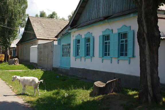 Une rue de Karakol (autrefois : Prjevalskij), 9 juillet 2006. Photo : J.-M. Gayman