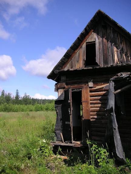 10 km au nord de Krasnorechenskij, près de Dal'negorsk, 25 juillet 2010. Photo : J. Michel