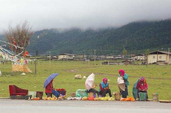 Un village tibétain (3200 m) au Sud de Shangri-la (Zhongdian), le 22 août 2010. Photo : J.-M. Gayman